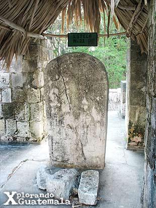 Ceibal y sus estelas mayas / foto 4