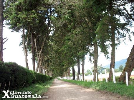 Laguna en Finca Cienaguilla / foto 4