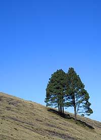 El paisaje es una joya, durante todo el trayecto.