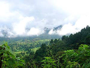 Paisaje nuboso del valle. Fotografía por Mario Santos.