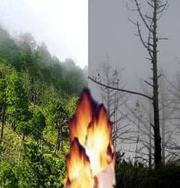 Ambas fotos son de la parte alta del Volcán Acatenango, escoge cuál panorama prefieres. Ninguna ha sido alterada digitalmente.