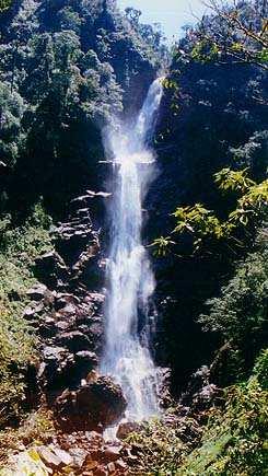 Chilascó es la cascada más alta de América Central.