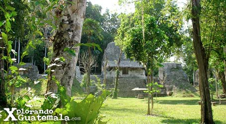 Viaje relámpago a Tikal-foto-53--9-1-2014
