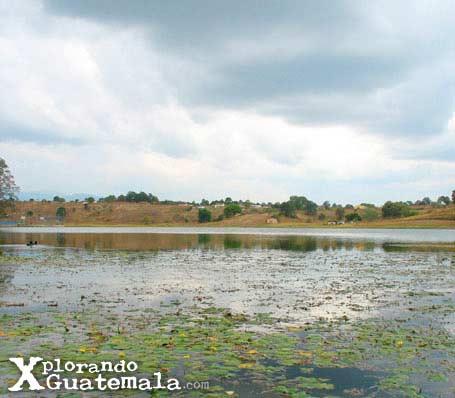 Revisitando la Laguna de Lemoa / foto 2