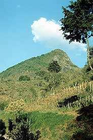 Pico de Palencia. Foto cortesía de fotosdeguatemala.com