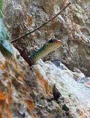 Cueva de las dos horas en Finca Ixobel, Petén