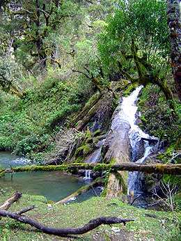 Laguna de Magdalena, un segundo Semuc Champey
