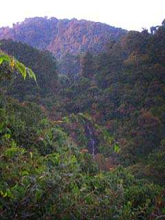 A lo lejos se divisa una cascada que se esconde en el valle. (Difícil foto por la hora, falta de luz y ubicación... una roca a la orilla del barranco).