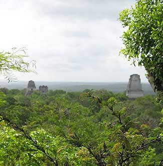 Tikal yacía oculto entre la selva durante la conquista española.