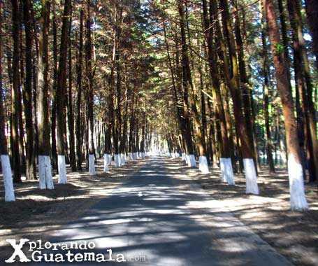 Parque ecológico de Florencia