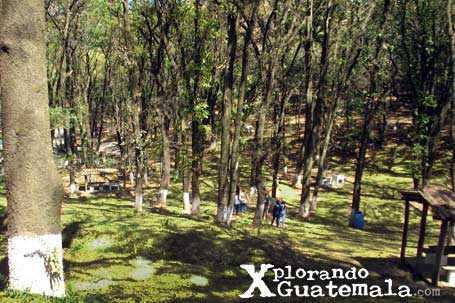 Parque ecológico de Florencia / foto 2